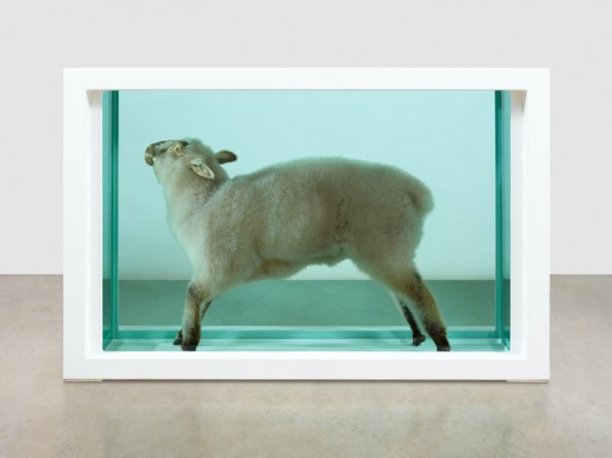 Damien Hirst, Away from the Flock, 1994