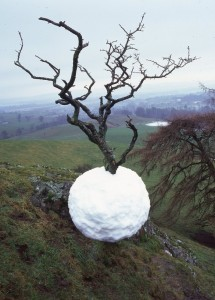 Andy Goldsworthy, Ice Ball
