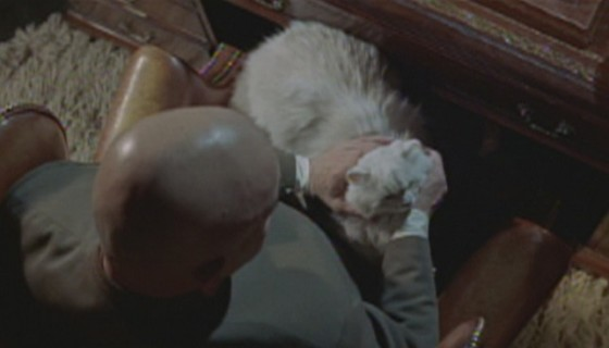 Telly Savalas holds the cat in On Her Majesty's Secret Service (1969)