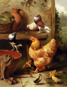5-A-Chicken-Doves-Pigeons-And-Ducklings-farm-animals-Edgar-Hunt