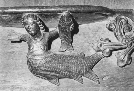 Figure 11: Exeter Cathedral Mermaid